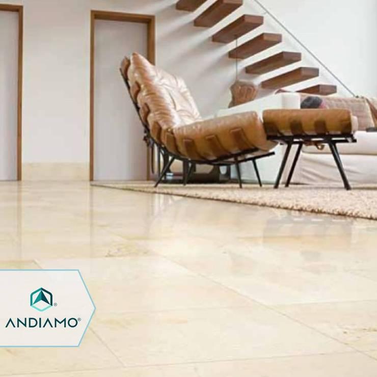 Trabajos: Salas / recibidores de estilo moderno por ANDIAMO (INVERSORA L&R)