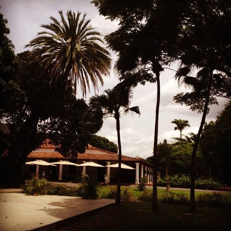 Sombrillas: Jardines de estilo  por Carpintería Quadro