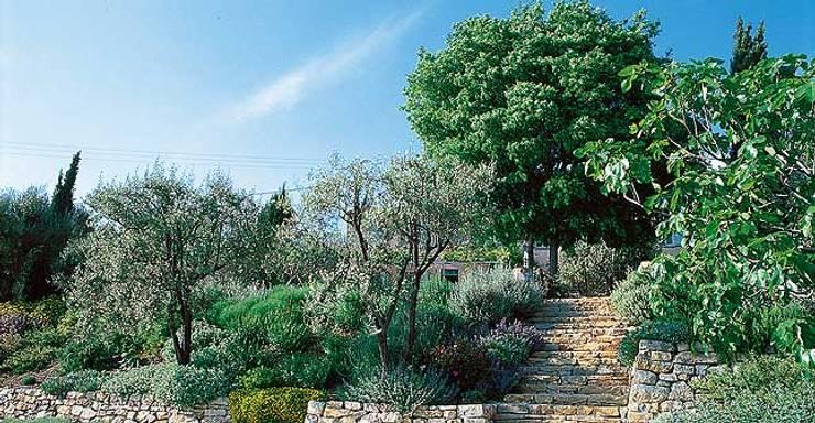 Jardins  por REV