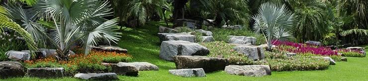 Exemples de réalisations: Jardin de style  par mattera-jardin0