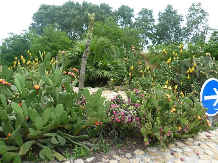 Bompas: Jardin de style  par Wiricactus