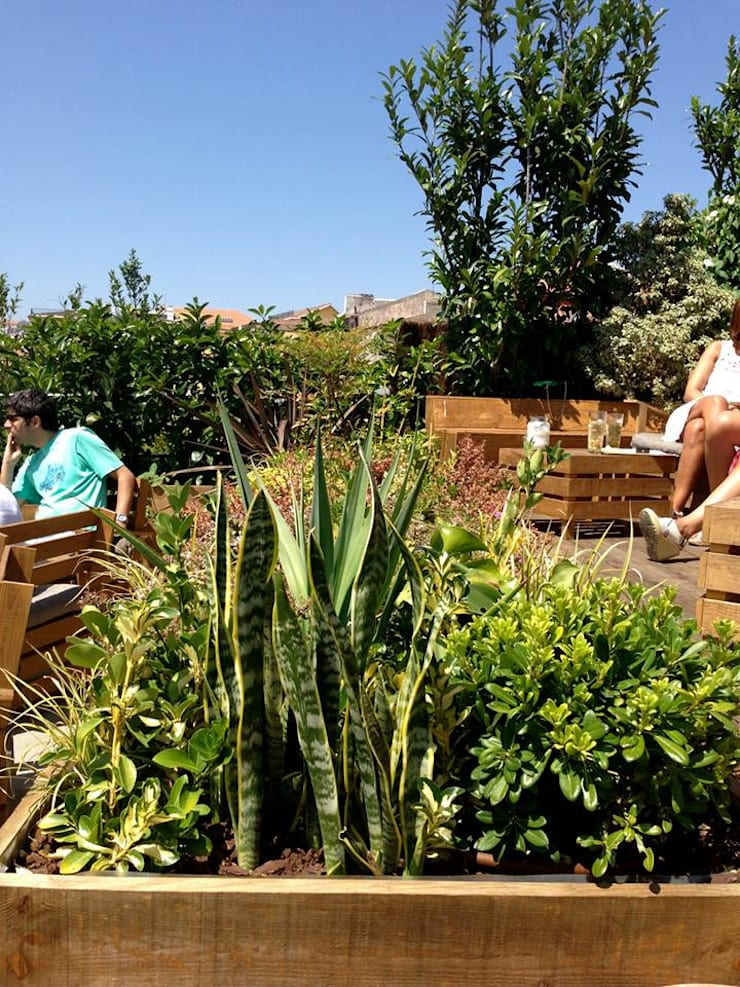 PARK:   por We Garden
