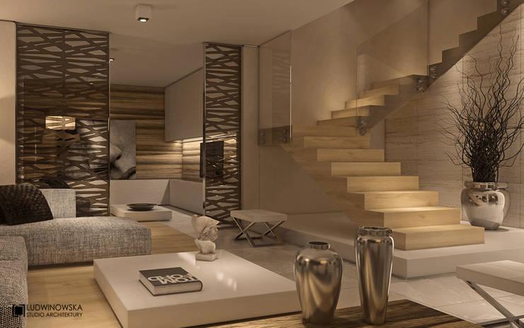 LIMBA NOIR: styl , w kategorii Salon zaprojektowany przez Ludwinowska Studio Architektury