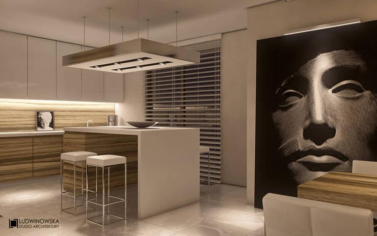 LIMBA NOIR: styl , w kategorii Kuchnia zaprojektowany przez Ludwinowska Studio Architektury
