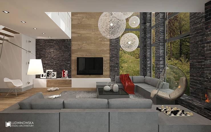 SOFT LOFT: styl , w kategorii Salon zaprojektowany przez Ludwinowska Studio Architektury