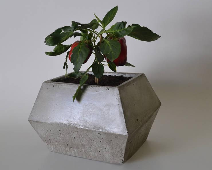 Maceta rectangulo XL de BODOQUE - Diseño en Concreto Minimalista