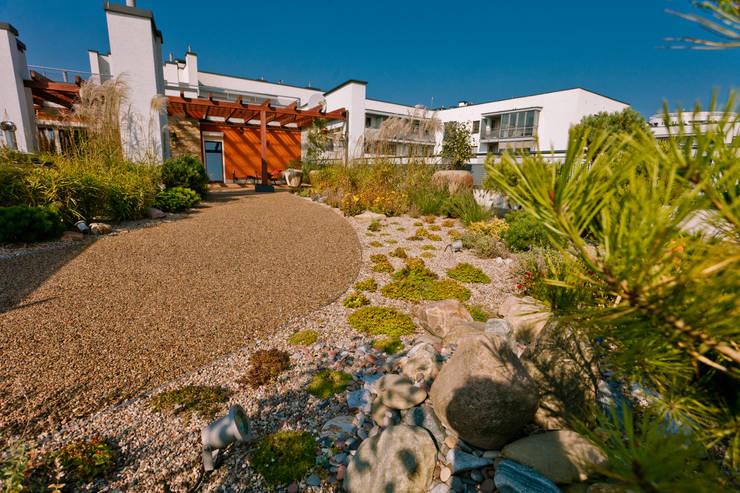 Ogród na dachu: styl , w kategorii  zaprojektowany przez HADIKA