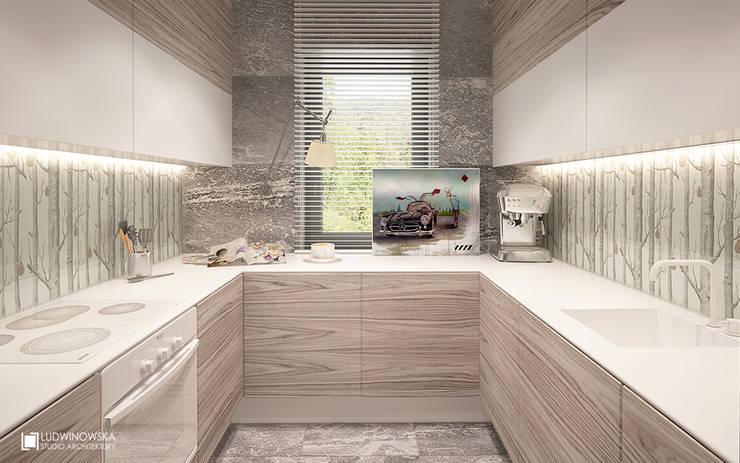 JELENIM TROPEM : styl , w kategorii Kuchnia zaprojektowany przez Ludwinowska Studio Architektury