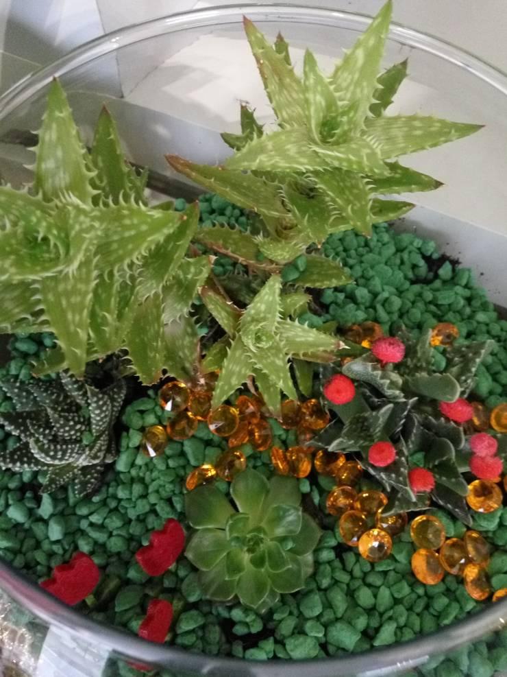 Mini jardim em aquário constituído por cátos: Jardim  por Maravilhas do Berço Lda