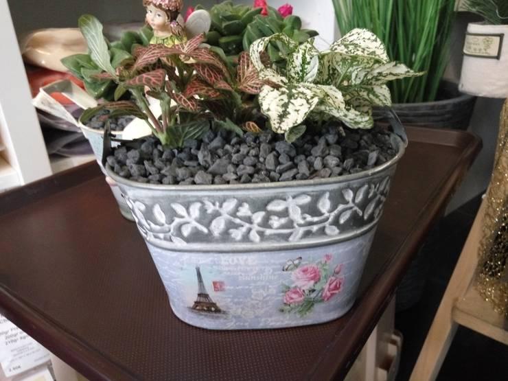 Plantas naturais em vaso de lata: Jardim  por Maravilhas do Berço Lda