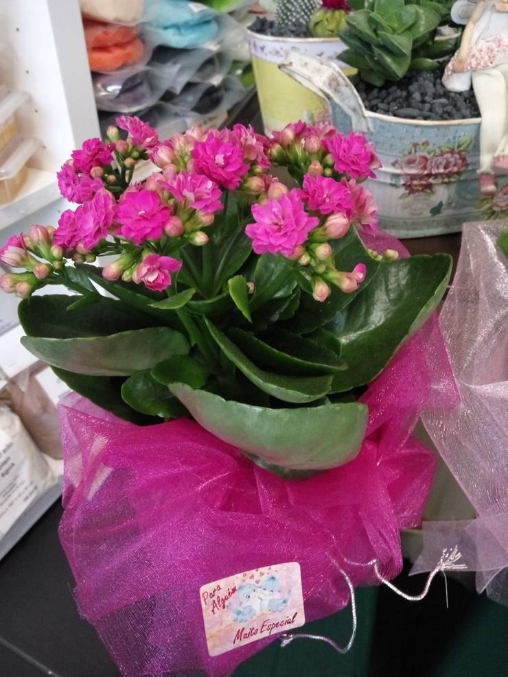 Vaso de planta natural: Jardim  por Maravilhas do Berço Lda