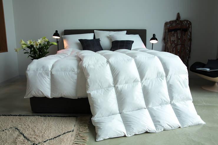 Dormitorios de estilo moderno por BeLaMa