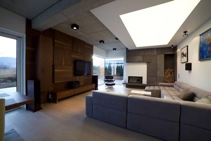 D190: styl , w kategorii Salon zaprojektowany przez PT-Wnętrza Pracownia Projektowa