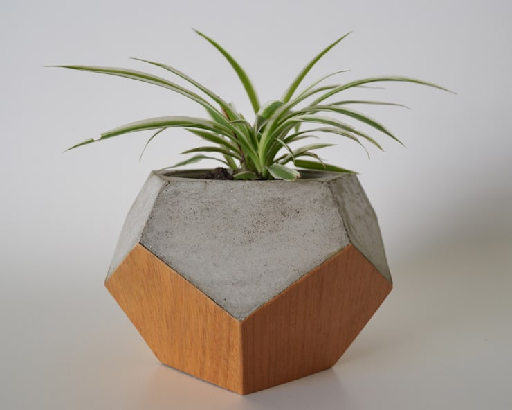 Maceta concreto revestida en madera: Hogar de estilo  por BODOQUE - Diseño en Concreto