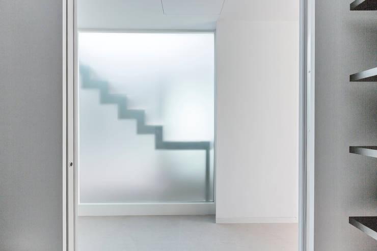 Windows  by Bornelo Interior Design, Modern
