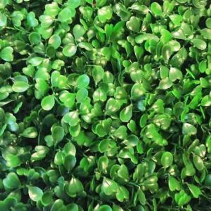 Arrayan Green Light: Jardín de estilo  por ENFOQUE CONSTRUCTIVO
