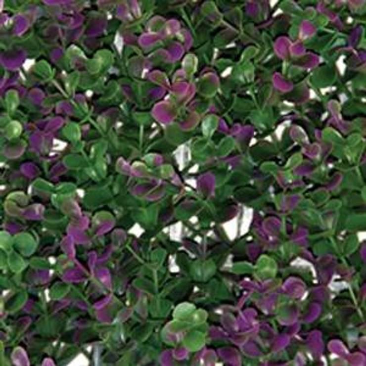 Arrayan Purple: Paisajismo de interiores de estilo  por ENFOQUE CONSTRUCTIVO