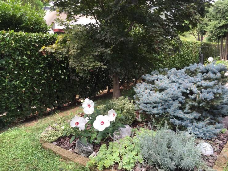 Jardines de estilo  de Simona Carcano