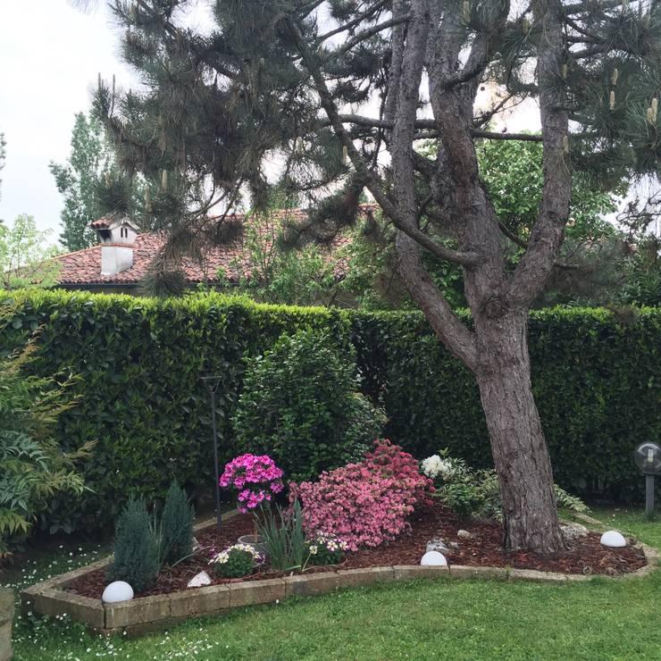 Projekty,  Ogród zaprojektowane przez Simona Carcano