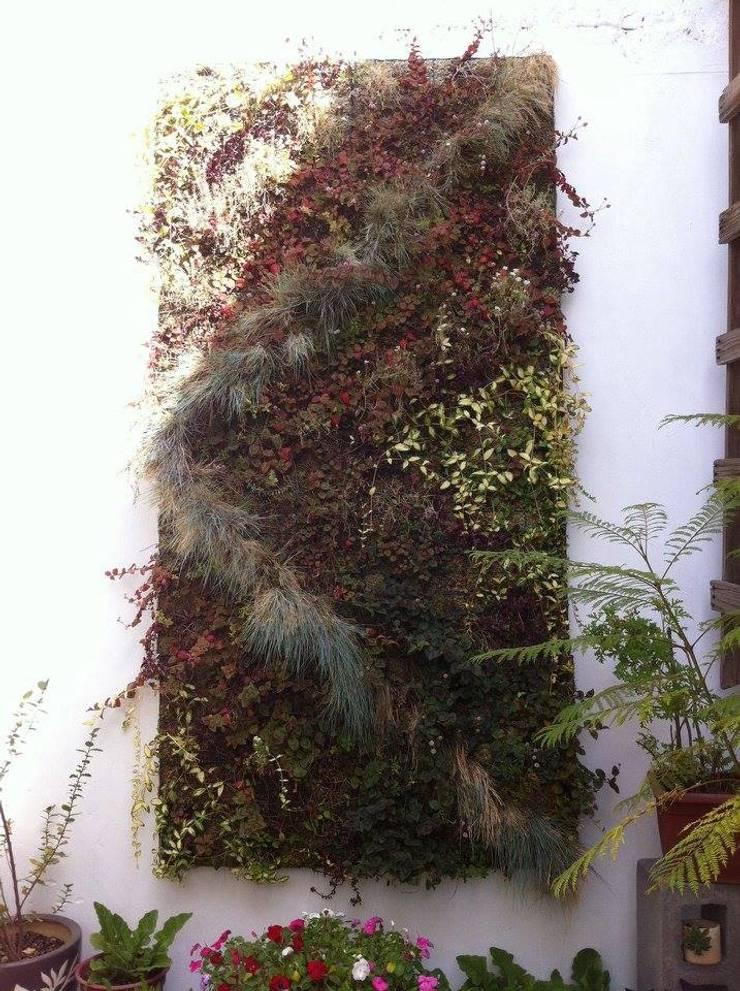 cuadros verdes: Jardín de estilo  por MANUVERDE