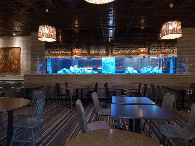 ADn's 6 m cichlids aquarium: Sala de estar  por ADn Aquarium Design