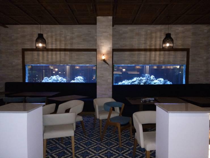 ADn's 6m cichlids aquarium: Sala de estar  por ADn Aquarium Design