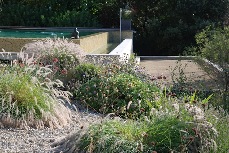 mediterranean garden by jardin gecko - Jardin Sec