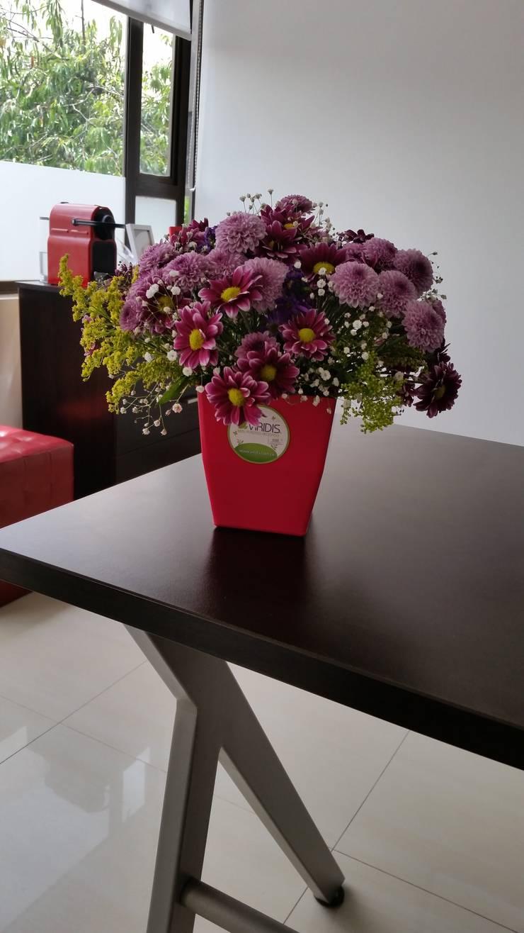 Matera Small color Magenta: Jardín de estilo  por Viridis Productos Eco Amigables