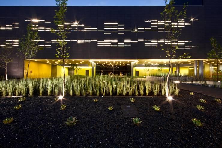 Foros TV Azteca: Jardines de estilo  por Francisco Pardo Arquitecto