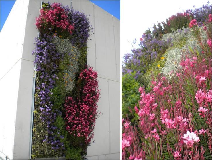 JARDINES VERTICALES: Jardines de estilo  por L&S arquitectos,