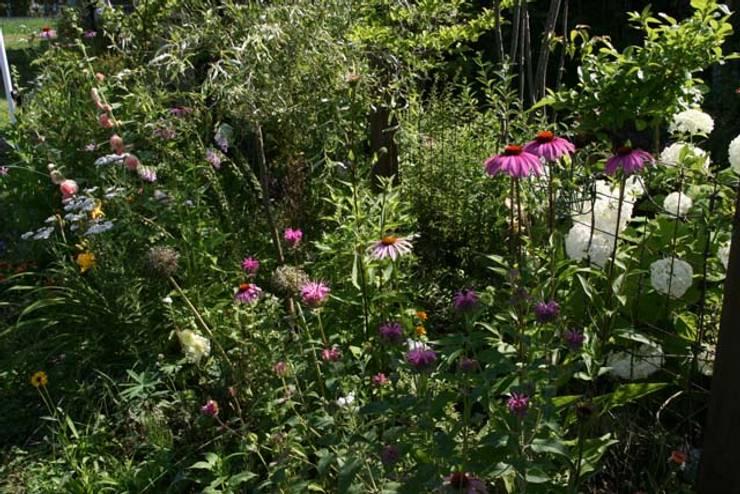 夏にも咲き続ける花の庭: 株式会社ガーデンホリックが手掛けたカントリーです。,カントリー