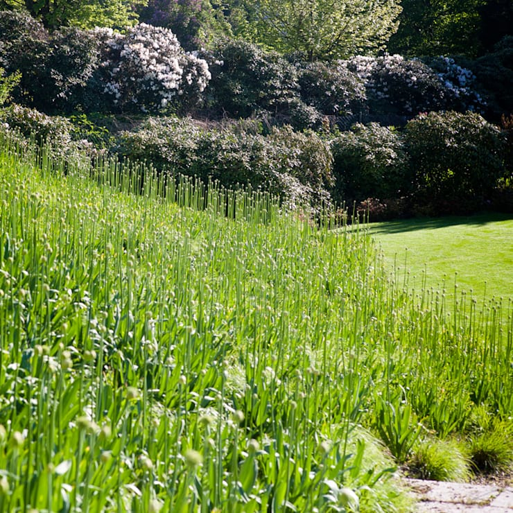 Jardin de style  par Stephan Maria lang Architektengesellschaft