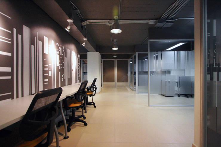 The Highland House - RIMA Arquitectura: Estudios y oficinas de estilo  por RIMA Arquitectura