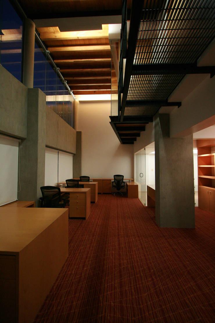 Elques - RIMA Arquitectura: Estudios y oficinas de estilo  por RIMA Arquitectura