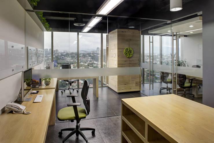 UHMA - RIMA Arquitectura: Estudios y oficinas de estilo  por RIMA Arquitectura