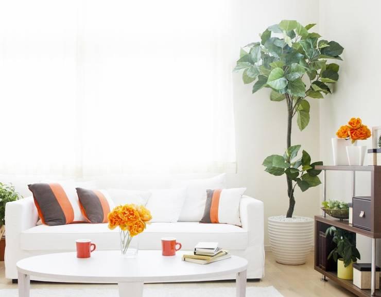 اختيار اثاث منزلي بشرط ان يكون متعدد الوظائف :  المنزل تنفيذ House Market for Decor & furniture