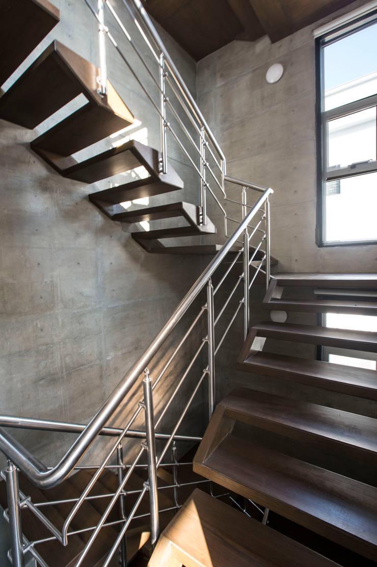 Butterfly House:  Corridor & hallway by ESSTEAM