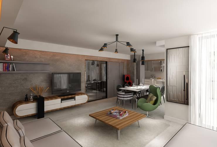 Mimoza Mimarlık – KAPLAN RESIDENCE: modern tarz Oturma Odası