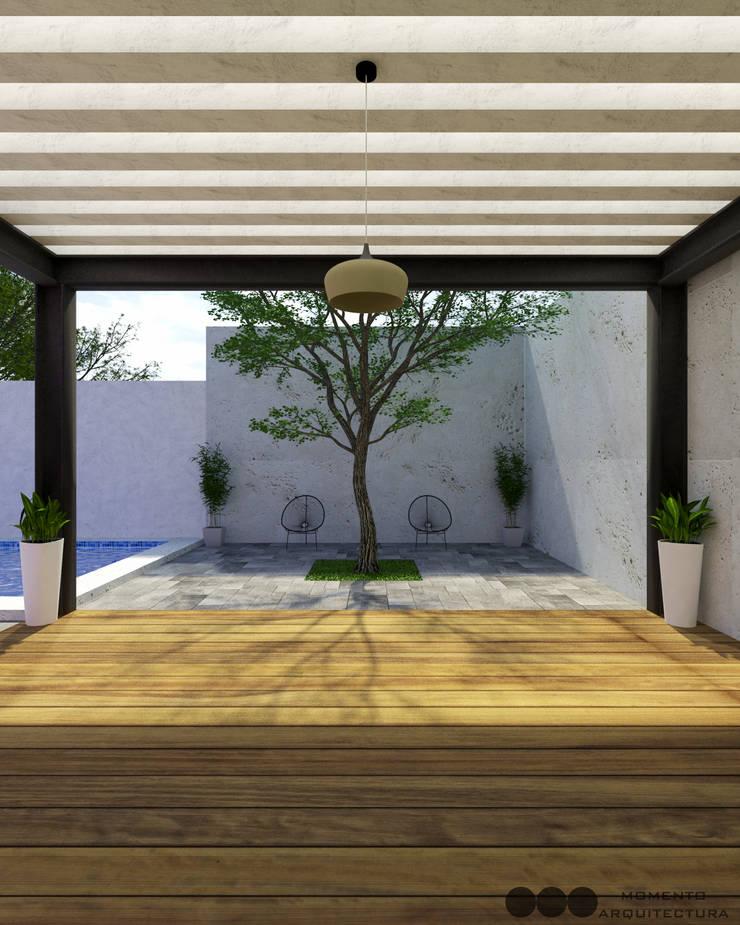 Proyecto Area de reuniones: Jardines de estilo  por MOMENTO Arquitectura