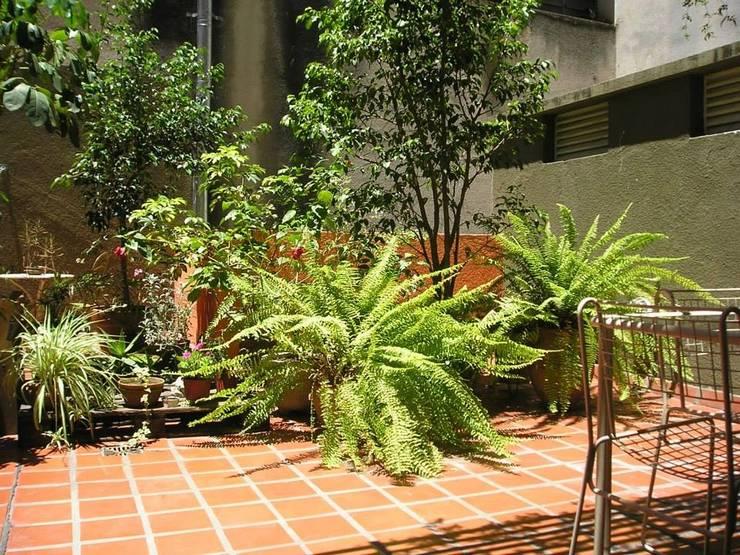 Jardín Giuntoli: Jardines de estilo  por Dhena CONSTRUCCION DE JARDINES
