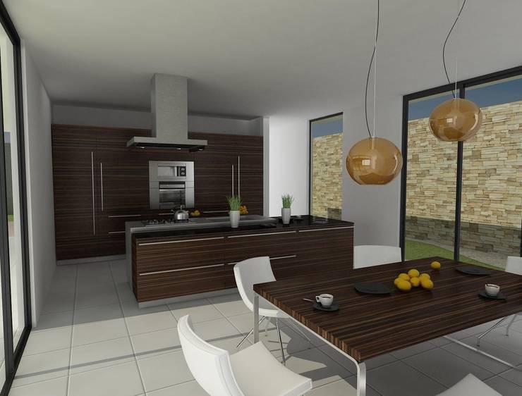 Cocina: Cocinas de estilo  por John Robles Arquitectos, Moderno