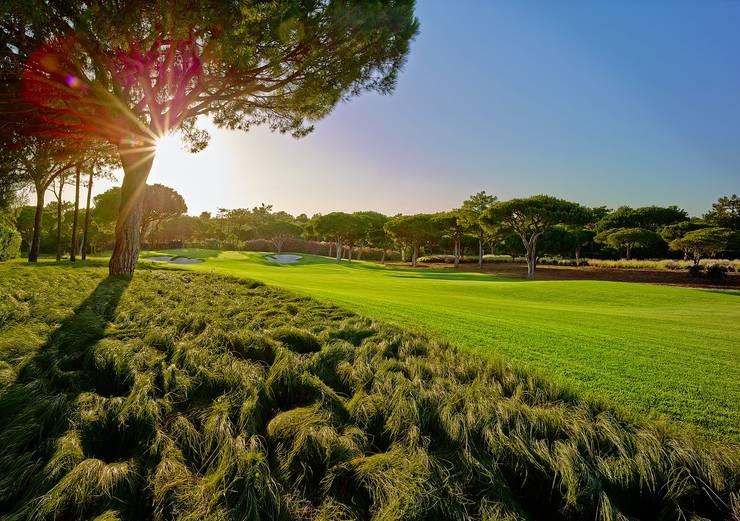 Envolventes do campo de golf:   por ECOSSISTEMAS; Áreas Verdes e Sistemas de Rega.