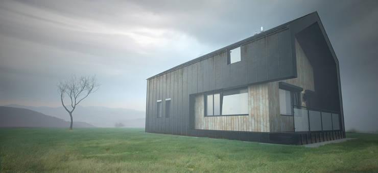 Лаконичность формы: Дома в . Автор – арх бюро Edifico