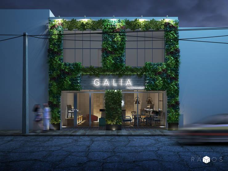 Diseño de fachada con escalas:  de estilo  por MRamos