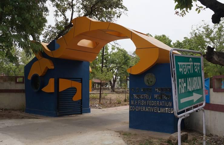 fish federation's entrance gate:  Windows by Vinyaasa Architecture & Design
