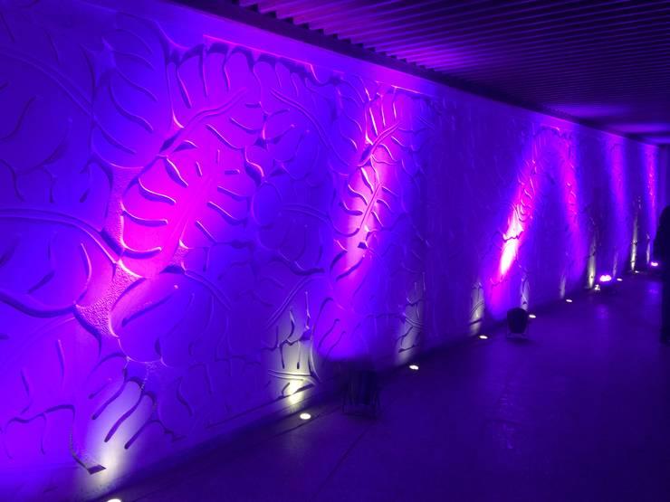 Interior Design:  Walls by The Silversea