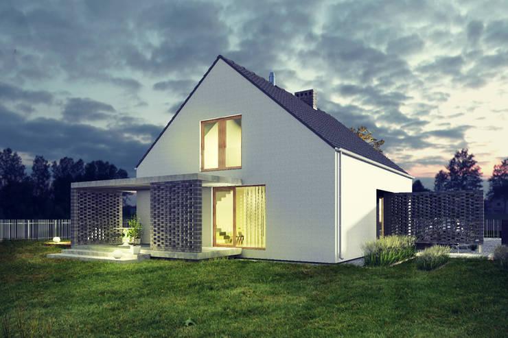 Дома в . Автор – biuro40