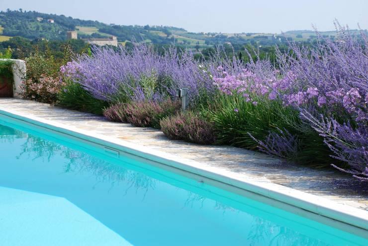 mediterranean Pool by Giardini Giordani