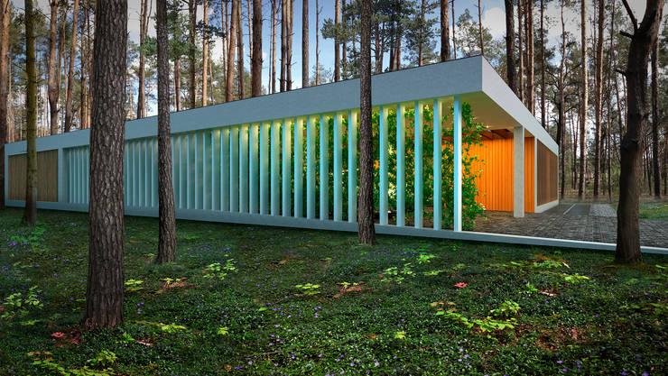 Дом 290 м2 г.Ирпень (Киевская область): Дома в . Автор – ALEXANDER ZHIDKOV ARCHITECT
