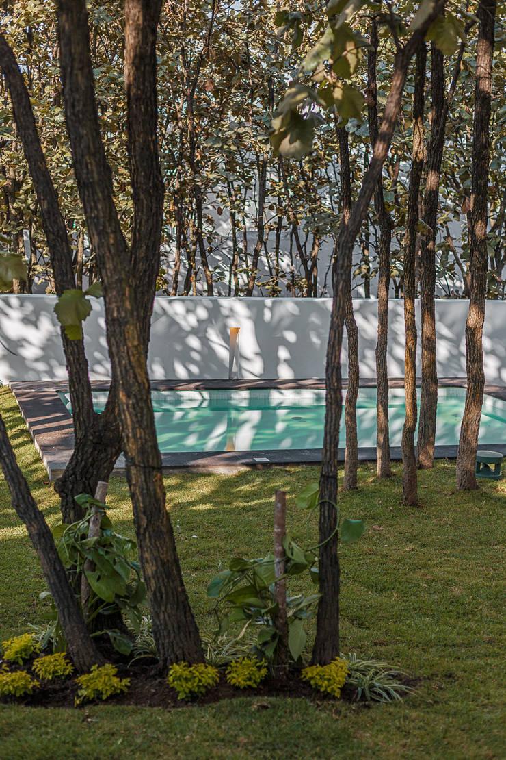 Bosques de Bugambilias: Jardines de estilo  por 2M Arquitectura
